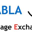 Brussels BlaBla Language Exchange's picture