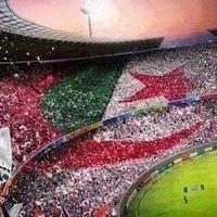 Hadj Sami Hadj's Photo