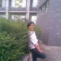 Fotos von Ying Zhang