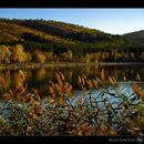 Eymir Lake Picnic (Saturday)'s picture