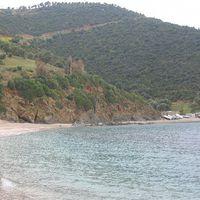 Spyros Adamopoulos's Photo