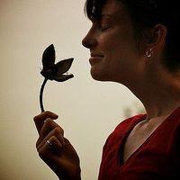 Sarah Babineau's Photo
