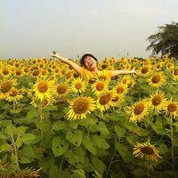Hien Nguyen's Photo