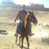 king of the desert  Nawafleh's Photo