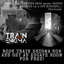 Train Enigma - probably largest real life game(RO)'s picture