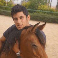 omar ashraf's Photo