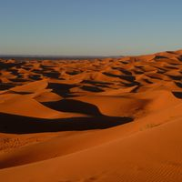 Traveling-in- Morocco's Photo