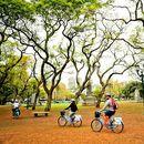 🥪 Bicicletas y picnic 🚴🏼♀️'s picture