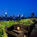 NYC Nightlife's picture