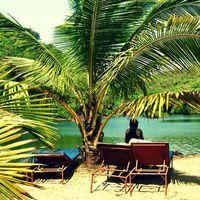 Fotos de Sumantra Bose