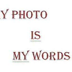 . .'s Photo