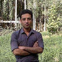 mehdi D's Photo