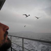 Kavi_e_alberta CardinaleCiriminna's Photo