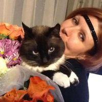 Елена Беляева's Photo