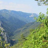 Ionescu Marian's Photo