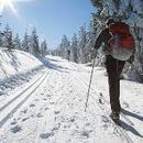 Cross-country skiing's picture