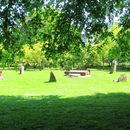 Picnic In Bute Park 's picture