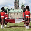 Looking for a tour guide in Ottawa's picture
