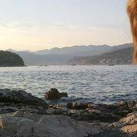 Grazia  Bonetti's Photo