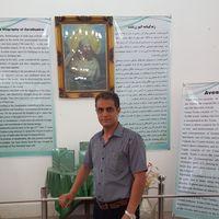 mehrdad ahmadi的照片