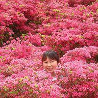 Shunzhi Zhao's Photo