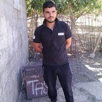 Hamza Ikhlef's Photo