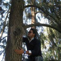 Ibrahim Bassidi's Photo