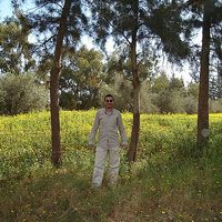 Amr Ezzat's Photo