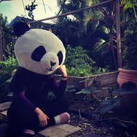 Suat Wen Bee's Photo