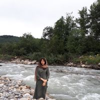 Farzaneh M's Photo