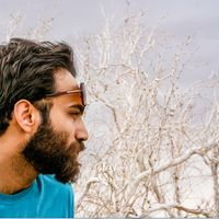 Mehdi Rad's Photo