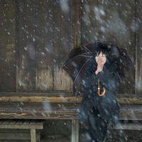Megumi Sata's Photo