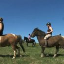 Bilder von Horseback riding Weekend - Bieszczady