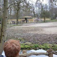 Fotos de Stijn Van de Velde