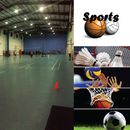 Volleyball, Basketball, Badminton SUNDAY's picture