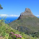 Lions Head Hike's picture