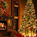Let's celebrate Christmas together 's picture