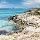 Viaggio In Puglia 's picture