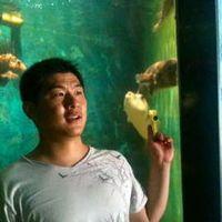 Фотографии пользователя Robert Wu