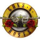 Guns N' Roses Concert's picture