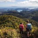 Great Barrier Island - Aotea Track's picture