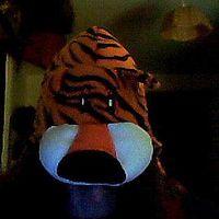 celtic.tiger's Photo