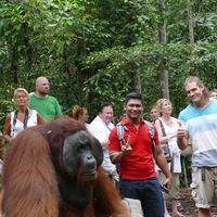 Alvin tour kalimanatan  0811-5214-005's Photo