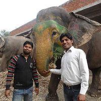 manish Bhaat's Photo