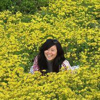 Lisa Huang's Photo