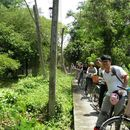 🚲 Monthly Cycling at Bangkrachao on  20th, Jan'18's picture