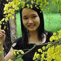 Thom Thai's Photo