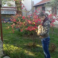Sofia Erdelyi's Photo