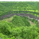Ajanta/Elora Cave Camping 's picture