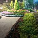 фотография  Yoga & Spring Flowers Exhibition-Orman Garden
